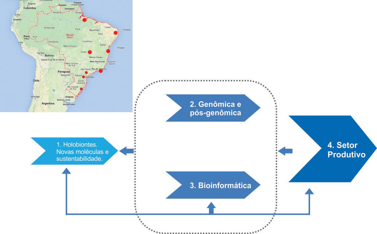 Mapa-newprojeto